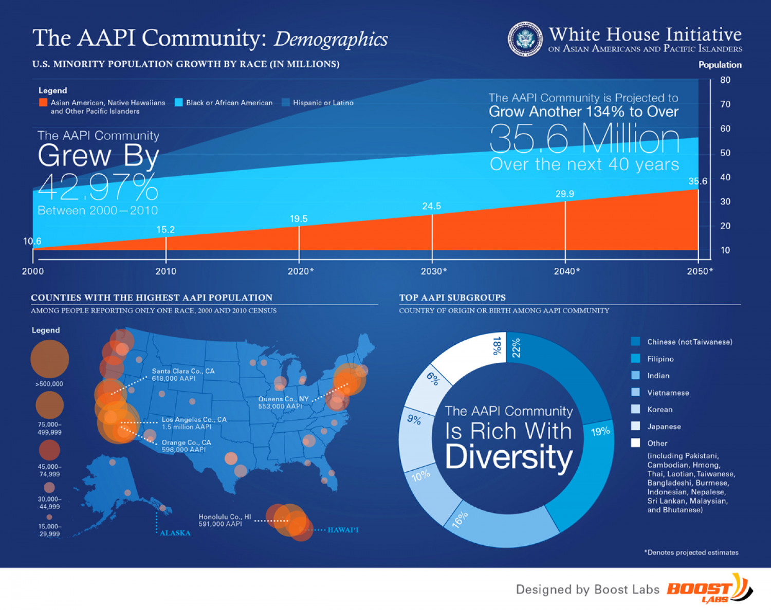 AAPI Community Demographics  Infographic