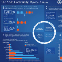 AAPI Community Objectives & Needs Infographic