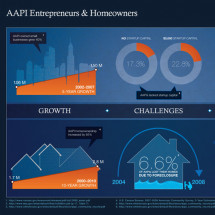 AAPI Entrepreneurs  Infographic