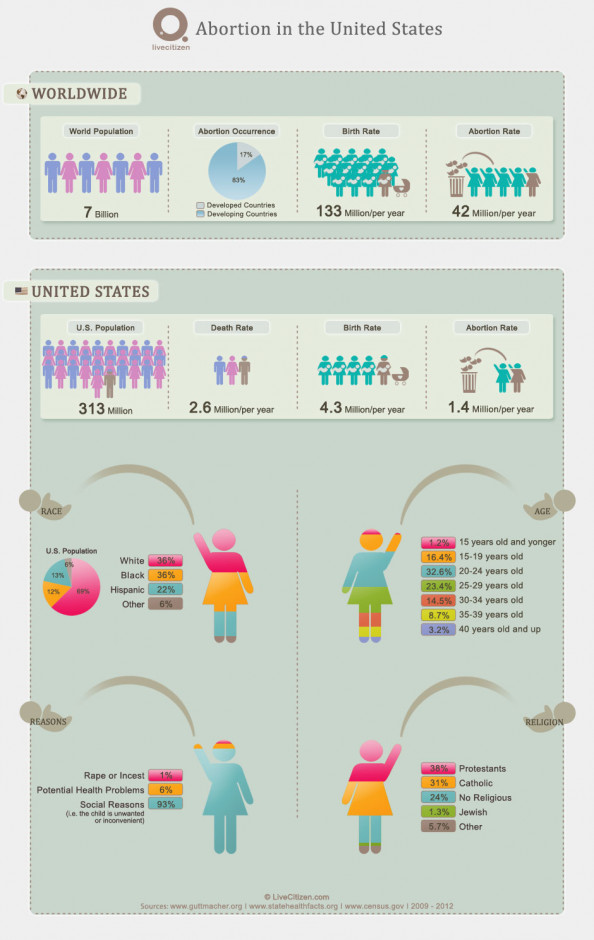 Abortion Statistics Infographic  Infographic