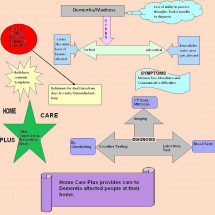 About Dementia & Care Infographic