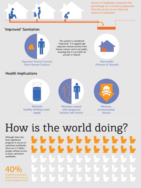What is an Access to Sanitation Indicator? Infographic