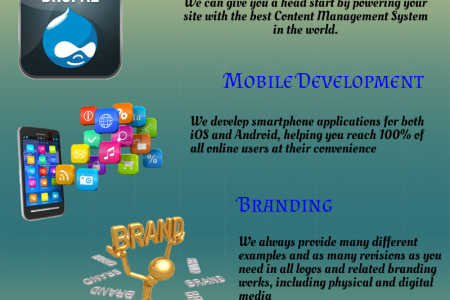Affordable and Comfortable Web Design Services Infographic