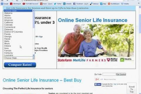 Affordable Life insurance for seniors over 80 Quote Infographic
