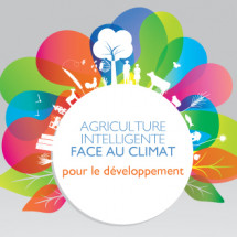 Agriculture intelligente face au climat pour le dveloppement Infographic