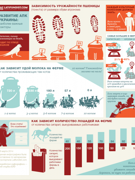 Agriculture of Ukraine Infographic