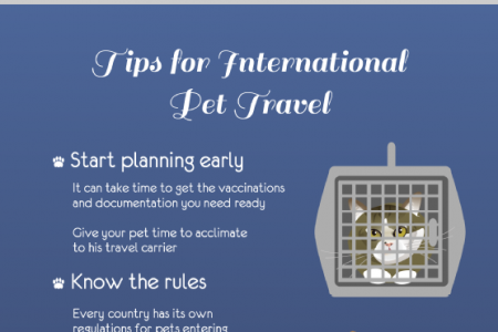All Aboard! Traveling Internationally with Your Pet Infographic