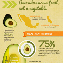 All About Avocados Infographic
