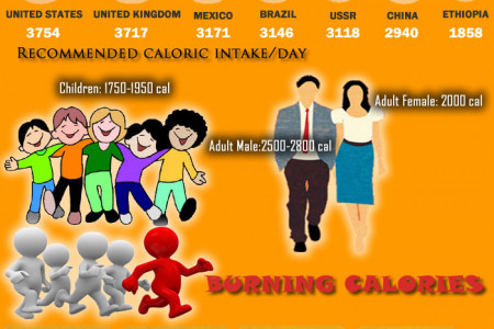 All About Calories  Infographic