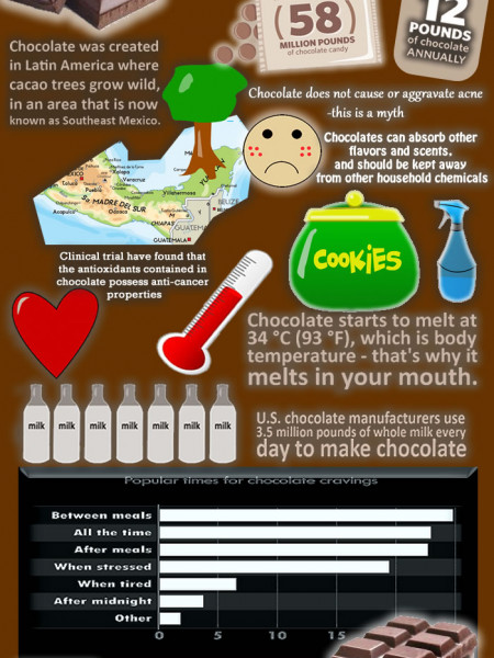 All About Chocolate Infographic