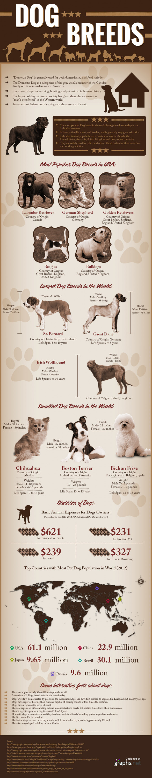 All about Dogs And Their Different Breeds