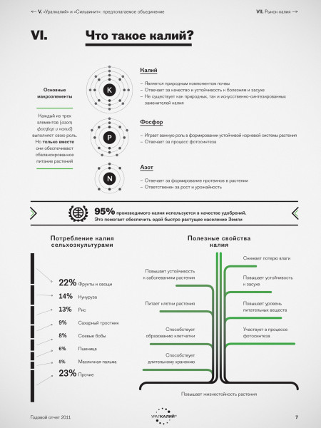 All About Potassium Infographic
