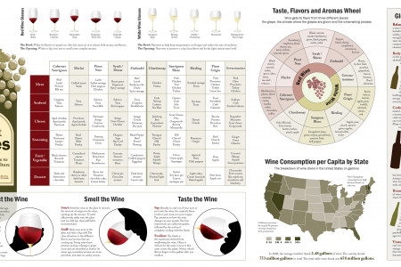 All About Wines Infographic