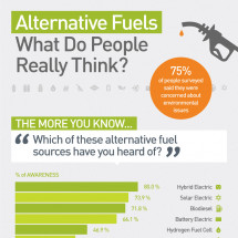 Alternative Fuels: What Do People Really Think? Infographic