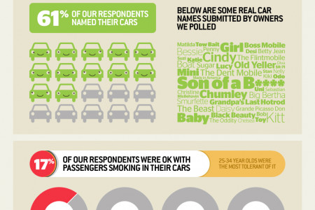 American Car Confessions Infographic