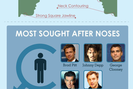 Americans and Nose Jobs Infographic