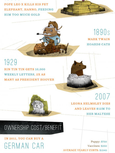America's Pet Frenzy  Infographic
