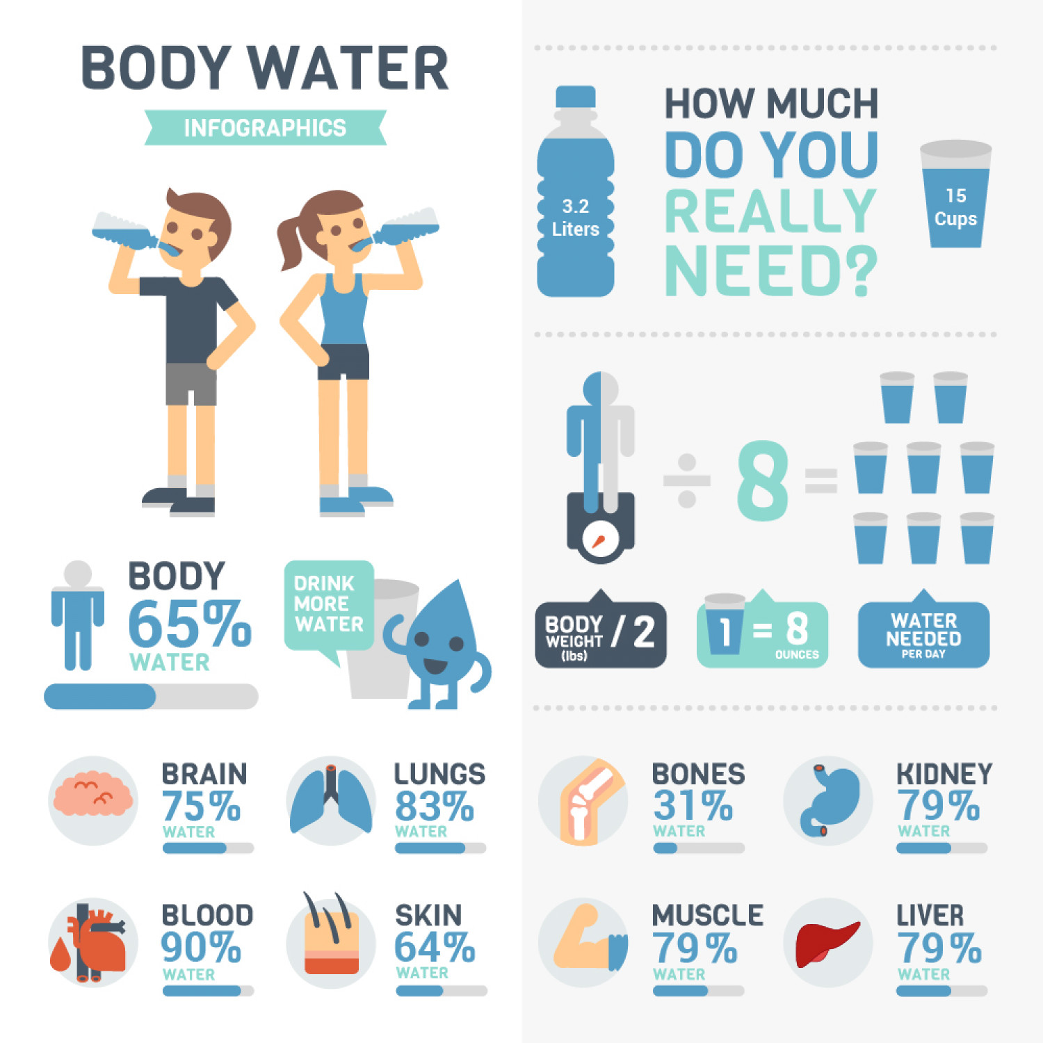 Amount of Water Present in our Body Infographic