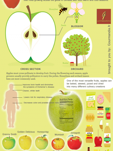 An apple a day keeps the doctor away Infographic