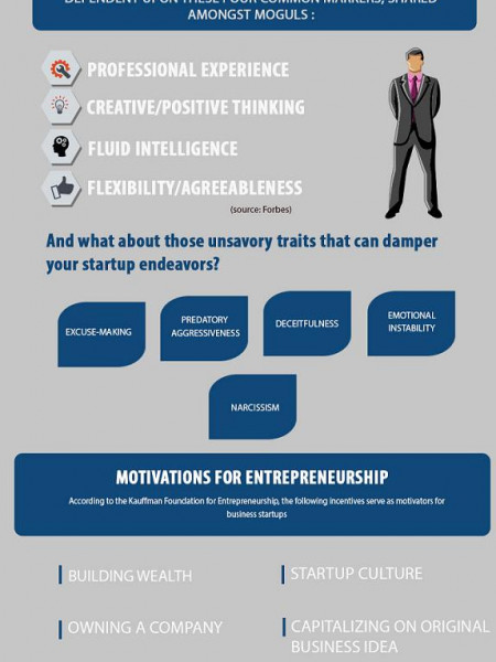 An Entrepreneur's Anatomy Infographic