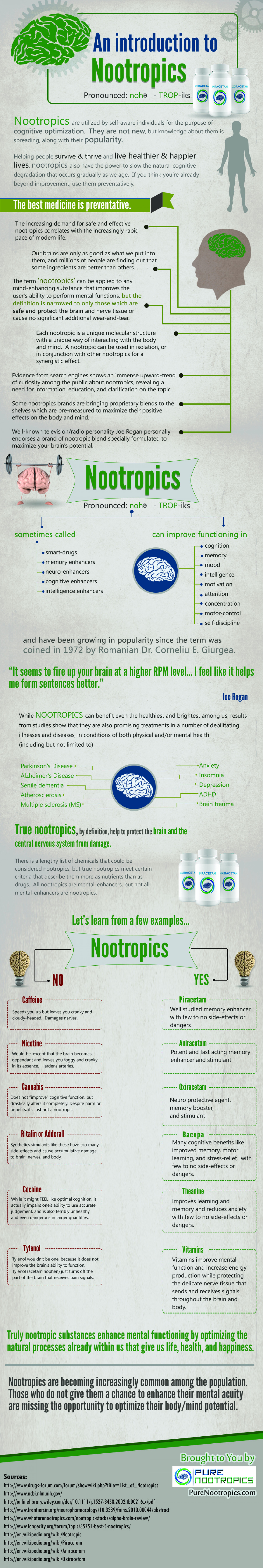 An Introduction to Nootropics Infographic