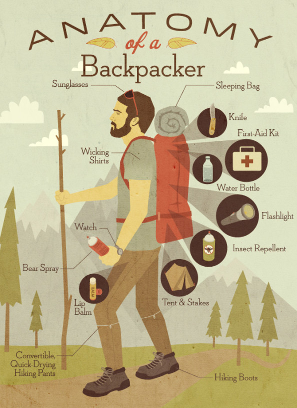 Anatomy of a Backpacker Infographic