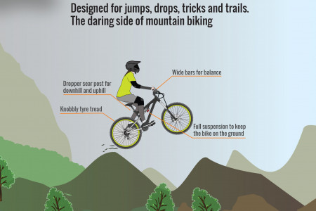 Anatomy of a Bicycle (Part VI) - Play Bikes Infographic