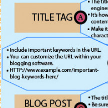 Anatomy of a Business Blog Post Infographic