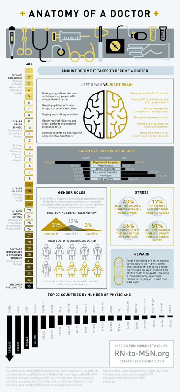 Anatomy of a Doctor Infographic
