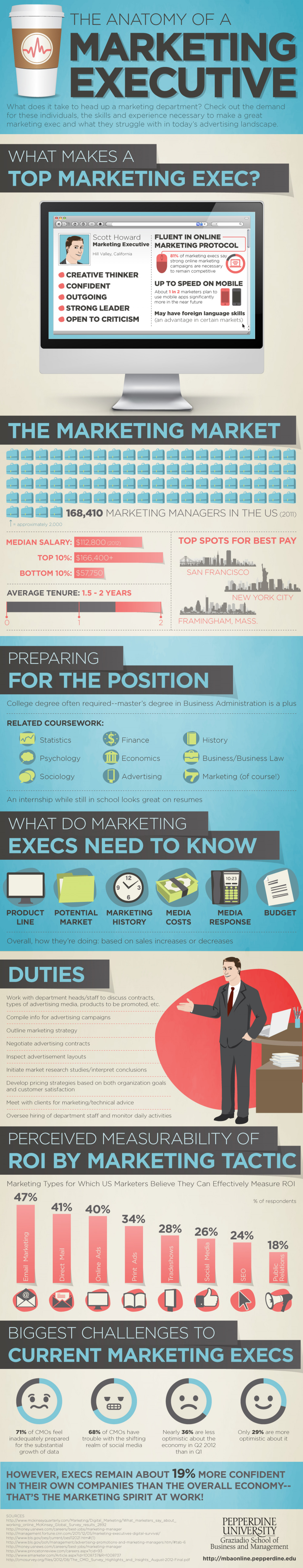 Anatomy of a Marketing Executive Infographic