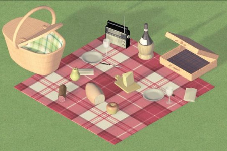 Anatomy of a Picnic Infographic