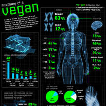 Anatomy of a Vegan Infographic