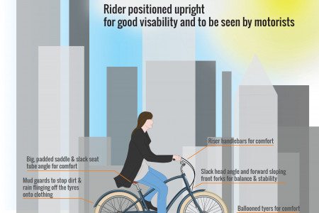 Anatomy of the Bicycle (Part I) - City Bikes Infographic