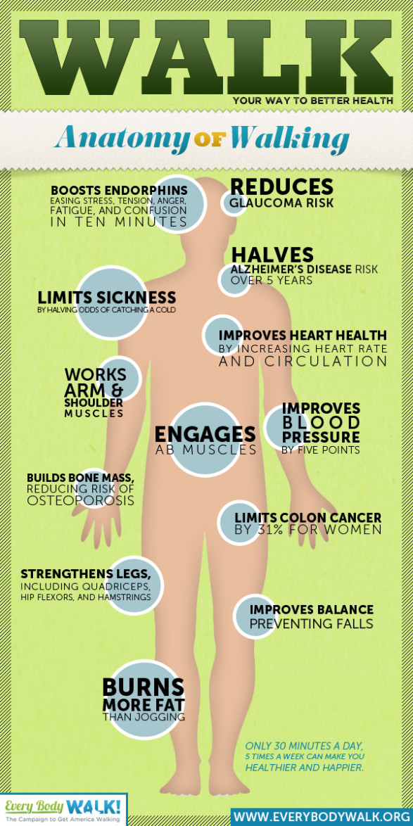 Walk Your Way to Better Health - Find out all of the great benefits you gain from walking!