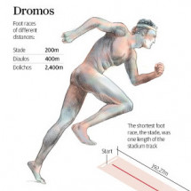 Ancient Olympics Infographic