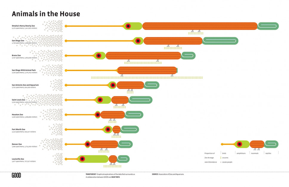 Animals in the House Infographic