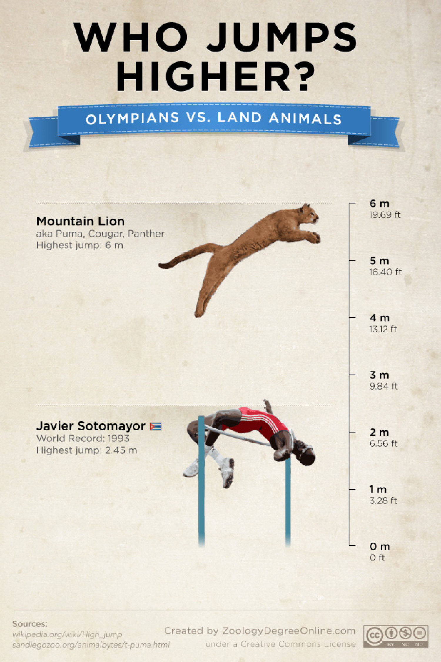 Animals Vs Olympians - Who Jumps Higher? Infographic