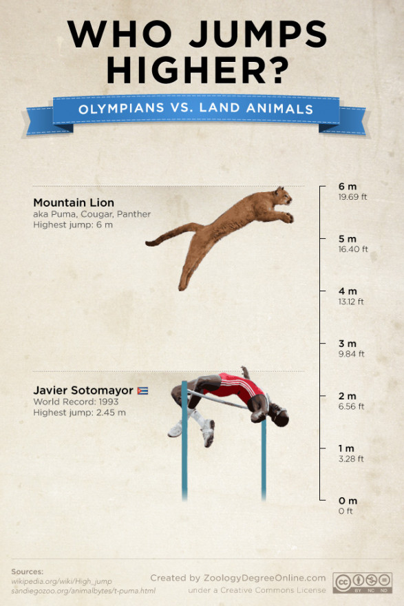Animals Vs Olympians - Who Jumps Higher?