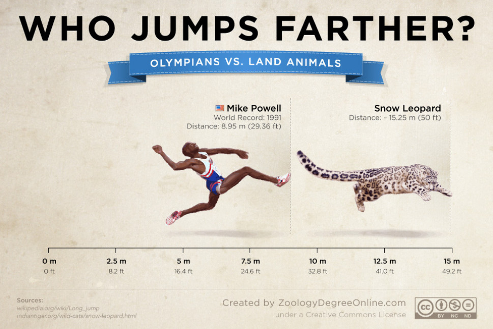 Animals Vs Olympians - Who Jumps Farther? | Visual.ly