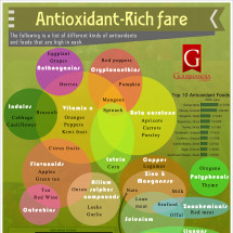 Antioxidant-Rich fare Infographic