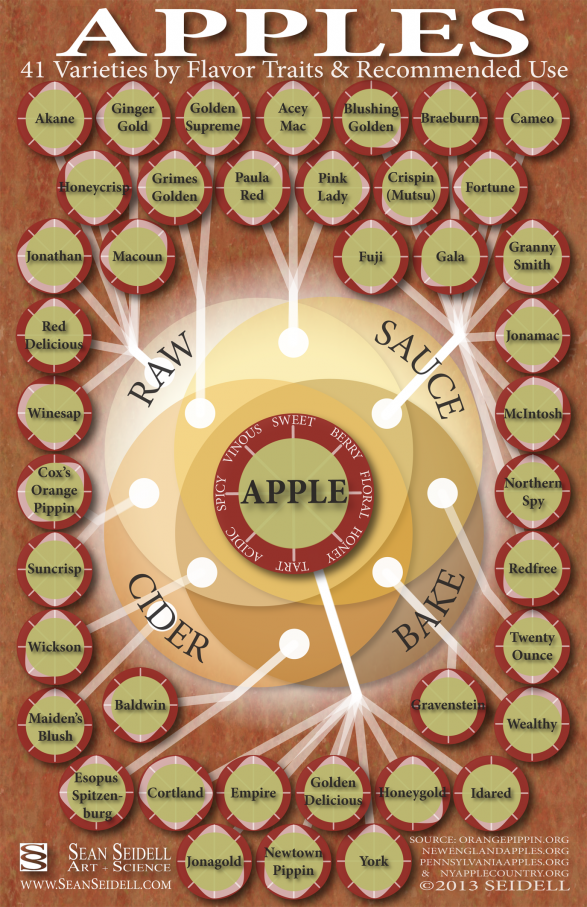 Apples: 41 Varieties by Flavor Traits and Recommended Use