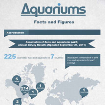 Aquariums - Facts, Figures and Highlights Infographic