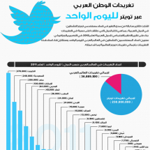 Arab World Tweets in One Day Infographic