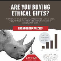 Are You Buying Ethical Gifts? Infographic