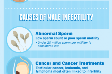 Are You Struggling to Conceive? Infographic