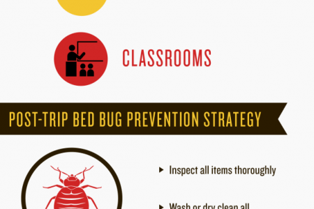 Are You Taking Bed Bugs Along for a Ride? Infographic
