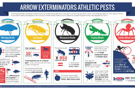 Arrow Exterminators Athletic Pests Infographic