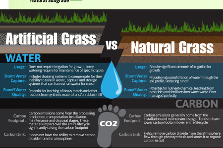 Artificial Grass: Keep it Green Forever Infographic