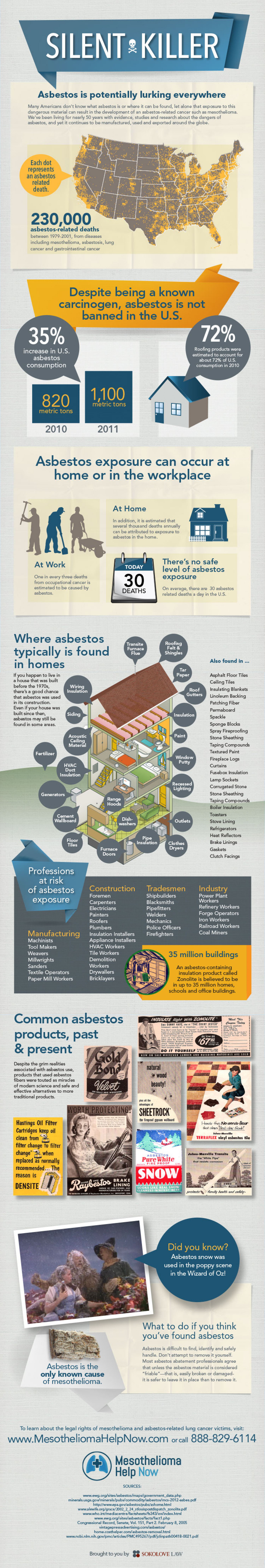 Asbestos: The Silent Killer Infographic