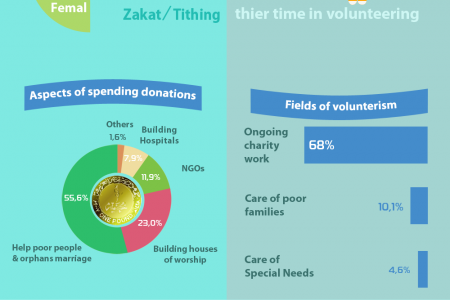 Aspects of Philanthropic & Donations in Egypt Infographic